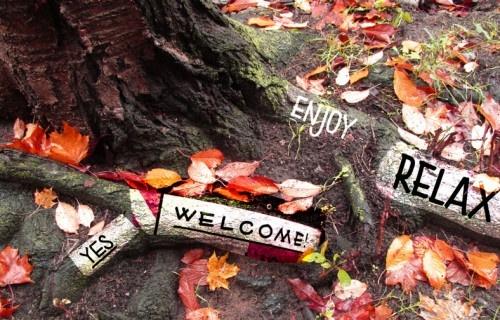 Baumwurzel beschriftet mit den Worten Yes Welcome Relax Enjoy